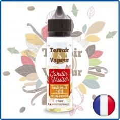 FRAICHEUR D'ÉTÉ MELON MENTHE - TERROIR & VAPEUR - 50 ml